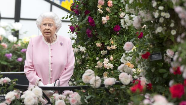 The Queen looks at a display of roses on the Peter Beale roses display stand (Richard Pohle/Times/PA)