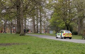 The alleged assaults happened in Ormeau Park earlier this month. Credit: Pacemaker