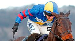 Old favourite: Jepeck is fancied at Sandown