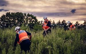 Search and rescue teams hunt for Noah Donohoe close to York Road in north Belfast for Noah Donohoe following an overnight review of CCTV on June 26th 2020 (Photo by Kevin Scott for Belfast Telegraph)