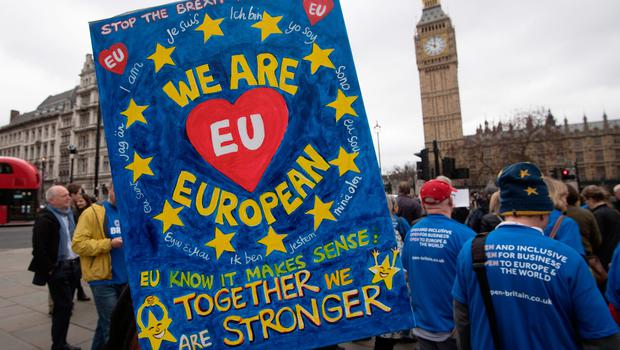 LONDON, ENGLAND - MARCH 29:  A pro-EU protester carries a placard during a demonstration near parliament on March 29, 2017 in London, England. Later today British Prime Minister Theresa May will address the Houses of Parliament as Article 50 is triggered and the process that will take Britain out of the European Union will begin.  (Photo by Carl Court/Getty Images)