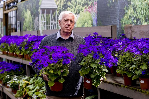 Robin Mercer, owner of Hillmount Garden Centres, is among those voicing concern about an inability to import certain plants and seeds from Great Britain (Liam McBurney/PA)