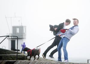 Press Eye - Belfast - Northern Ireland - 16th October 2017  Strong winds hit Donaghadee on the Co. Down coast as storm Ophelia spreads across Ireland.     Picture by Jonathan Porter/PressEye