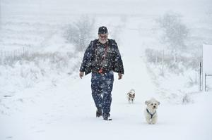 16/1/2018 Peter Wachs pictured at Divis mountain in Belfast during a heavy fall of snow with dogs Muppet and Lulu Mandatory Credit © Stephen Hamilton