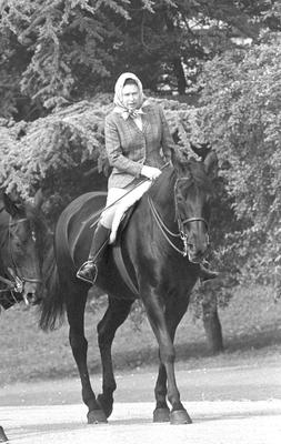 File photo dated 08/06/82 of Queen Elizabeth II riding her horse Centennial in Windsor Home Park, as more than any other interest, horses and ponies have been the Queen's passion throughout her long life. PRESS ASSOCIATION Photo. Issue date: Sunday April 3, 2016. The monarch's love for the equine world is something she shared with her mother and she has been breeding and racing horses for more than 60 years. See PA story ROYAL Birthday Horse. Photo credit should read: PA Wire
