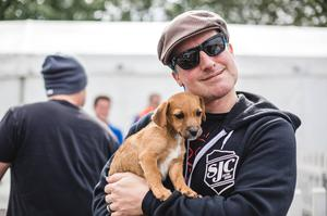 Green Day and Rancid visit Assisi Animal Sanctuary. (Facebook/Belsonic)