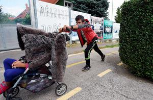 A migrant boy pushes a baby buggy next to the No1 main road near Budaors, Hungary on September 5, 2015 to head to the Hungarian-Austrian border. Several thousand refugees were transported by 104 Hungarian public buses and coaches to the Austrian border from the Hungarian capital early morning. Migrants from several countries left Hungarian refugee camps in the direction of Austria in the hope to reach Germany.  AFP PHOTO / ATTILA KISBENEDEKATTILA KISBENEDEK/AFP/Getty Images