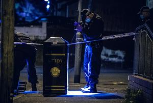 Police at the scene of a stabbing incident in the Woodbourne Crescent area of west Belfast on May 2nd 2020 (Photo by Kevin Scott for Belfast Telegraph)