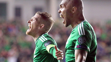 Dream boys: Steven Davis and Josh Magennis get the Euro 2016 party started at Windsor Park