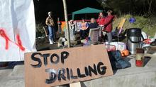 Local residents and protesters at Woodburn Forest. Image: Pacemaker