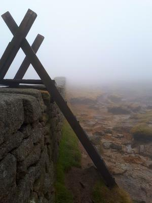 Was a fairly foggy day coming up from Bloody Bridge, eerily quiet except for the wind. Picture is Mourne wall Southern slope.  Submitted by Keith Lowry, from Kilbride, Ballyclare. March 2017
