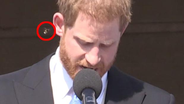 But in a comical moment, Harry was targeted by bothersome bee (PA Video)
