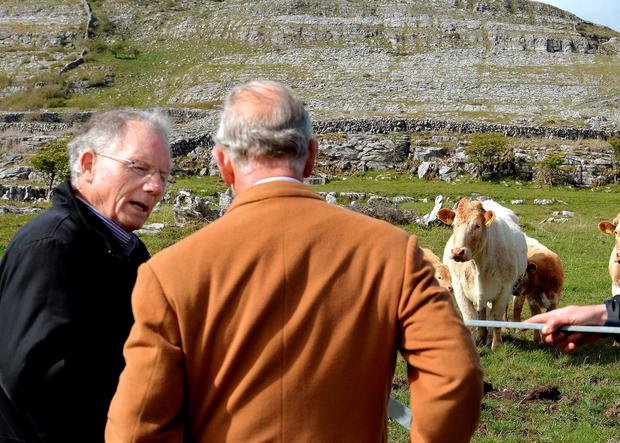 THE BURREN, IRELAND - MAY 19:  Prince Charles, Prince of Wales is given a talk on farming by local farmer Pat Nagle during his visit to The Burren, an ancient and dramatic stony outcrop famed for its rare plant life, biodiversity and archaeology, on the first day of his Royal visit to the Republic of Ireland on May 19, 2015 in County Clare, Ireland. The Prince of Wales and Duchess of Cornwall arrived in Ireland today for their four day visit to the Republic and Northern Ireland, the visit has been described by the British Embassy as another important step in promoting peace and reconciliation. (Photo by John Stillwell - WPA Pool/Getty Images)