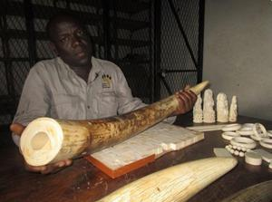 Almost four tons of ivory is held in Malawi's stockpile, and it is going to burn the lot.