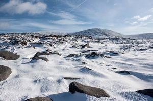 Readers' winter pictures 2015 - Myself and two friends took advantage of the recent snowfall and went for a hike in the Mourne Mountains. It was a stunning landscape. I shot this image as we were coming off Pierce's Castle 495m. I have aptly named it 'Frozen Landscape'. - David J Campbell. Twitter handle: @Photodave109