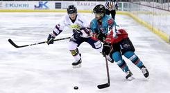 Belfast Giants defenceman Mark Garside vying with Dundee Stars defenceman Jagger Dirk (William Cherry/Presseye)