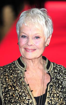 File photo dated 16/10/13 of Dame Judi Dench has been nominated for the best actress Oscar for her role in Philomena. PRESS ASSOCIATION Photo. Issue date: Thursday January 16, 2014. See PA story SHOWBIZ Oscars. Photo credit should read: Ian West/PA Wire