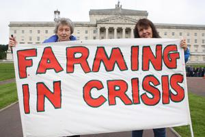 PACEMAKER BELFAST  04/09/2015 Farmers, processers and retailers have held a protest at Stormont to highlight volatility in prices. It was organised by the Ulster Farmers' Union (UFU) and comes ahead of Monday's key EU farm ministers summit on the crisis in the dairy industry. Protestor Christine Richie makes her feelings clear outside Stormont. Picture Matt Bohill.