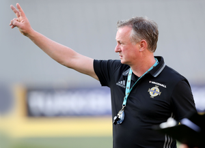 No bother: Michael O'Neill believes expectation is a good thing after years of hoping for the best. Photo: William Cherry/Presseye