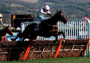 Douvan ridden by Ruby Walsh jump the last on their way to victory in the Sky Bet Supreme Novices' Hurdle on Champion Day