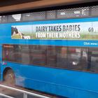 One of the advertisements on a Translink bus