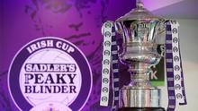 The Irish Cup semi-finals and final will be played at Windsor Park later this month.