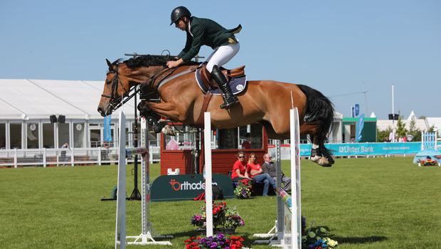 Up and over: Dermott Lennon and Mullabrack Royal Pride win at Balmoral