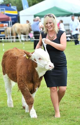 "FILE PICTURE Presseye.com -6th July 2013 Agriculture Minister Michelle O'Neill takes Simmental ""Gurteen Emperior"" for a stroll at Saturday's Omagh Show. Photograph by Stephen Hamilton/Presseye"