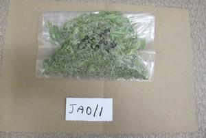 Cannabis recovered by police from Maxwell's locker at Norton Manor Camp in Somerset.