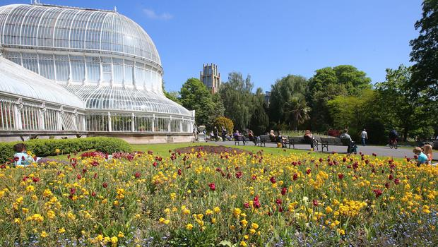 Press Eye - Belfast - Northern Ireland - 29th May 2018  People enjoy the sunshine in Botanic Gardens in Belfast as Northern Ireland continues to get good weather.     Picture by Jonathan Porter/PressEye