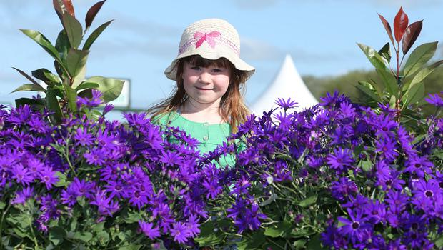 Katherine Smart , aged 5 ,from Loughgall during the First day of the 2018 Balmoral Show, in partnership with Ulster Bank, at Balmoral Park (Brian Little/PressEye)