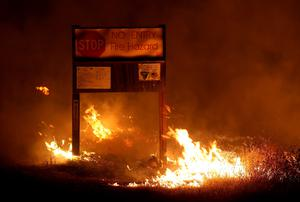 CLEARLAKE, CA - AUGUST 02:  Flames from the Rocky Fire burns through dry grass on August 2, 2015 near Clearlake, California. Over 1,900 firefighters are battling the Rocky Fire that burned over 22,000 acres since it started on Wednesday afternoon. The fire is currently five percent contained and has destroyed at least 14 homes.  (Photo by Justin Sullivan/Getty Images)