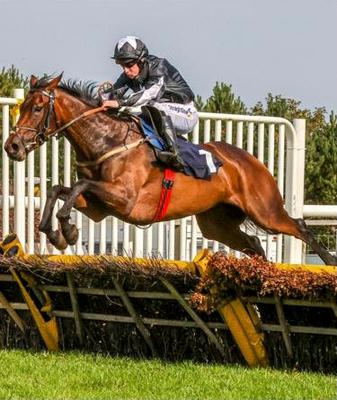 On the up: Danny McMenamin on his way to victory aboard Millie of Mayo at Hexham