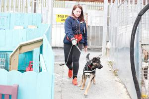 Cliodhna Lavery animal welfare assistant at Assisi Animal Sanctuary near Newtownards.