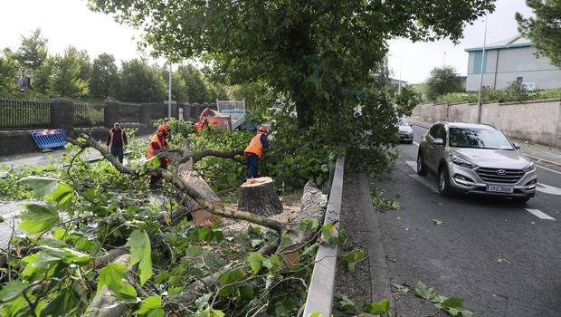 Efforts to move a fallen tree on Finglass Road by Glasnevin Cemetary, Dublin (Brian Lawless/PA)