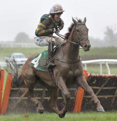 Tony McCoy during the RABI Gateway Project Maiden Hurdle Race at Chepstow Racecourse, Monmouthshire. PRESS ASSOCIATION Photo. Picture date: Wednesday November 6, 2013. See PA story RACING Chepstow. Photo credit should read: Tim Ireland/PA Wire