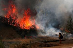 CLEARLAKE, CA - AUGUST 03:  A Cal Fire firefighter is dwarfed by huge flames during a backfire operation to head off the Rocky Fire on August 3, 2015 near Clearlake, California. Nearly 3,000 firefighters are battling the Rocky Fire that has burned over 60,000 acres has forced the evacuation of 12,000 residents in Lake County. The fire is currently 12 percent contained and has destroyed at least 14 homes. 6,300 homes are threatened by the fast moving  blaze.  (Photo by Justin Sullivan/Getty Images) *** BESTPIX ***