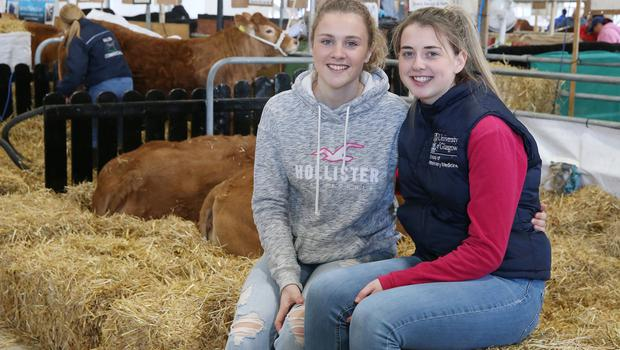PressEye-Northern Ireland- 16th May 2018-Picture by Brian Little/ PressEye  Martine McCann (left) and Alica McAuley with her Limousin Cattle   during the First day of the 2018 Balmoral Show, in partnership with Ulster Bank, at Balmoral Park  Picture by Brian Little/PressEye