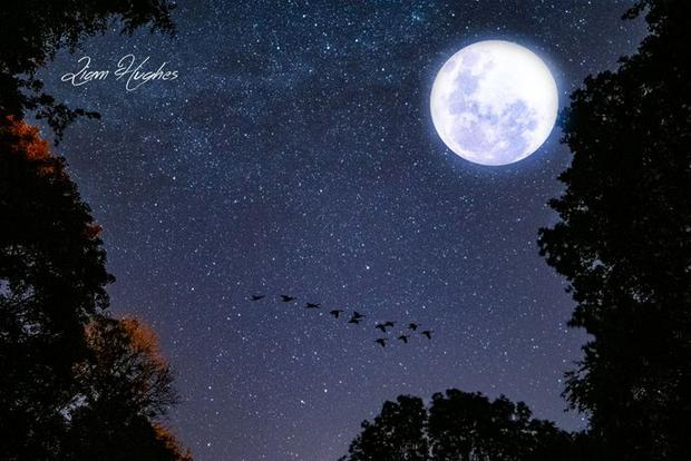 Last night's Harvest Moon at Gleno Waterfall. Picture by Liam Hughes