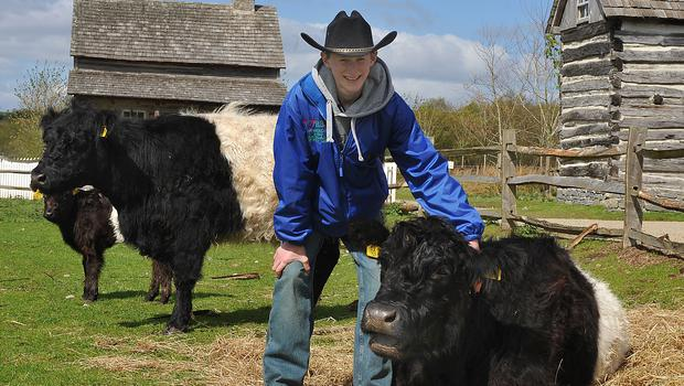J. R. Blair with one of his families Belted Galloway cattle at the Rare Breeds event.