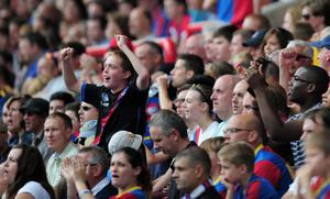 LONDON, ENGLAND - AUGUST 18:  Crystal Palace fans enjoy the atmosphere during the Barclays Premier League match between Crystal Palace and Tottenham Hotspur at Selhurst Park on Augsut 18, 2013 in London, England.  (Photo by Jamie McDonald/Getty Images)