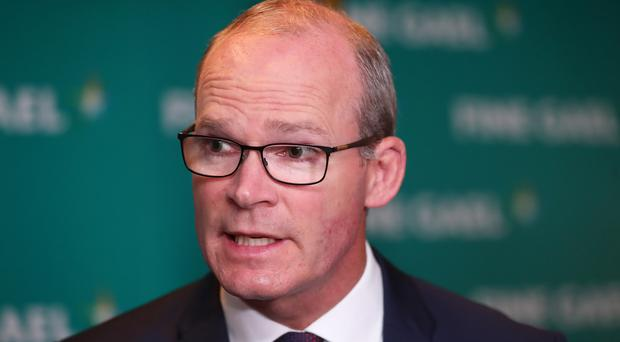 Simon Coveney has warned of the dangers of a no-deal Brexit (PA)