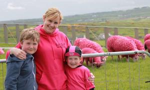 Tracey Andrew and Courtney enjoy the pink sheep at the Giants Causeway