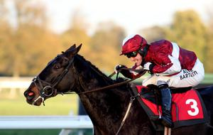 AP McCoy rides Foundation Man to win the Weatherbys Bank Foreign Exchange Handicap Steeple Chase at Kempton Park Racecourse, Middlesex. PRESS ASSOCIATION Photo. Picture date: Monday November 4, 2013. See PA Story RACING Kempton. Photo credit should read: Steve Parsons/PA Wire.