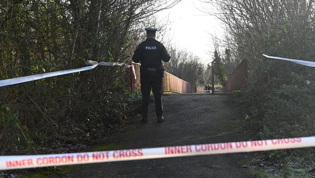 Pacemaker Press 17/01/2020 Police at the scene at the Lake Road in Craigavon on Friday. A 40-year-old man has been arrested on suspicion of a murder in Craigavon, County Armagh. The Police Service of Northern Ireland (PSNI) said a murder investigation was launched after the body of a 25-year-old man was found in the Lake Road area on Thursday night. A post-mortem examination will be conducted. Pic Colm Lenaghan/Pacemaker