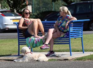 Seapark, Holywood, Co Down. Temperatures have hit the glorious 20s in Northern Ireland. Picture: Freddie Parkinson/Press Eye