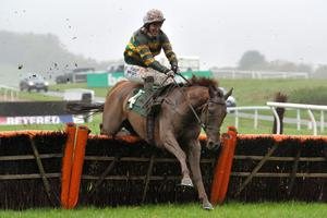 El Macca ridden by Tony McCoy during the RABI Gateway Project Maiden Hurdle Race at Chepstow Racecourse, Monmouthshire. PRESS ASSOCIATION Photo. Picture date: Wednesday November 6, 2013. See PA story RACING Chepstow. Photo credit should read: Tim Ireland/PA Wire