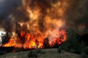 CLEARLAKE, CA - AUGUST 03:  Flames from a backfire operation burn through a grove of trees as firefighters try to head off the Rocky Fire on August 3, 2015 near Clearlake, California. Nearly 3,000 firefighters are battling the Rocky Fire that has burned over 60,000 acres has forced the evacuation of 12,000 residents in Lake County. The fire is currently 12 percent contained and has destroyed at least 14 homes. 6,300 homes are threatened by the fast moving  blaze.  (Photo by Justin Sullivan/Getty Images)