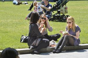 Stephen Hamilton  23rd June  2015 - Presseye.com Hundreds of sun worshippers take a welcome break from work to have their lunch break and soak up some sunshine at City hall in Belfast.  Picture by Stephen Hamilton/ Presseye