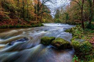 Steven Hylands, from Banbridge took this picture of Clare Glen. You can see a herron in the distance waiting patiently to catch any fish swimming down stream! November 2015